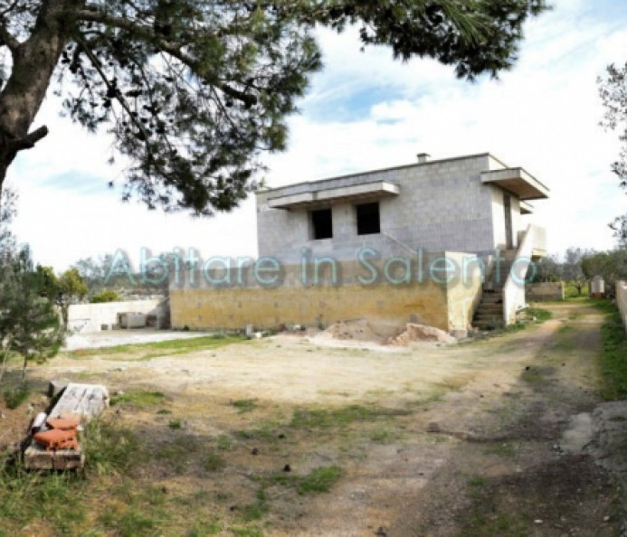 Detached House in the Raw State with Land
